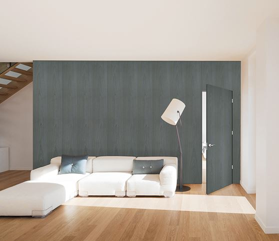 Room featuring Vicaima Marina Grey stained Ash door and wall panels