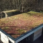 Can Green Roofs Reduce Storm Water Run-off?