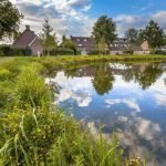 Why creating new ponds helps to protect the ecosystem