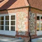 Latham's timber trio offers a solid solution