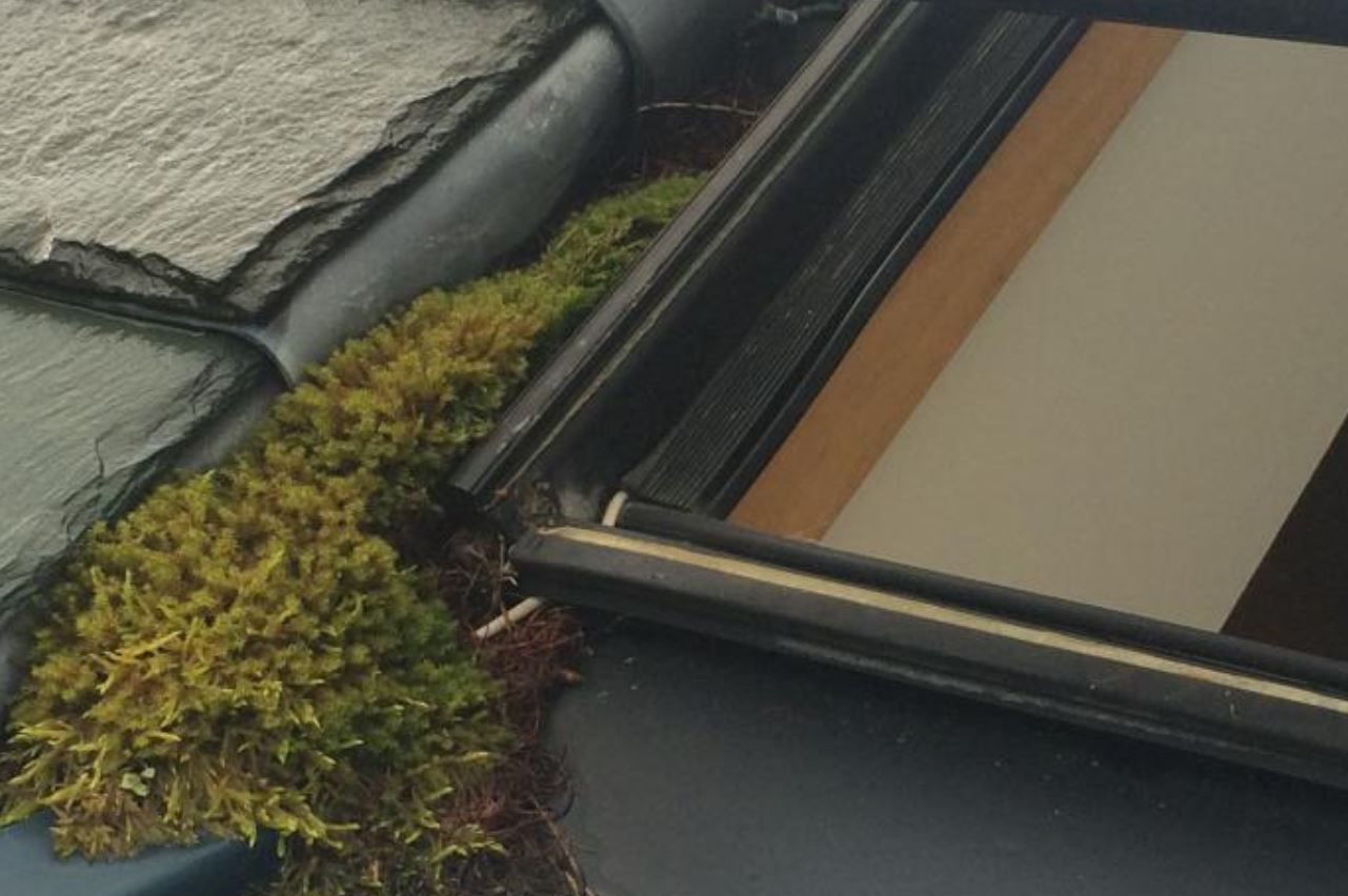 steel rooflights - poor maintenance