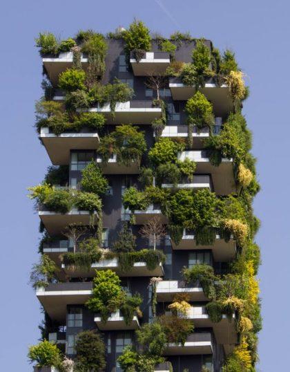 environmentally conscious building