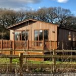 Forest holiday park site aims for Building with Nature award